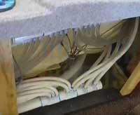 manifold plumbing system