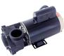 Sundance Spa LX 2HP 2-Speed 230V Pump 6500-094