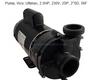 Balboa Vico 2 1/2 HP 230V 2-Speed Pump 1016204
