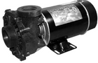 Waterway 2HP 230V 2-Speed Pump 3420820-10 Hi-Flo 48 Fram