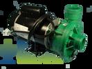 DreamMaker 2HP 2 Speed Deluxe Pump 120V Green
