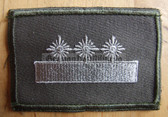 sbutv008 - FELDDIENST UTV STABSFELDWEBEL - all branches of the army and border guards