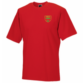Lindley T-Shirt in House Colours - Embroidered & Delivered to School