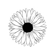 Free Sunflower  SVG Cut File