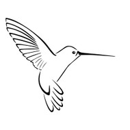 Free Hummingbird SVG Cut File