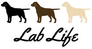 Free Lab Life SVG Cut File