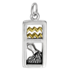 Sterling Silver Aquarius the Water Bearer Zodiac Sign Pendant Charm with Vermeil