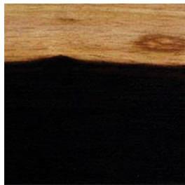 blackwood-500