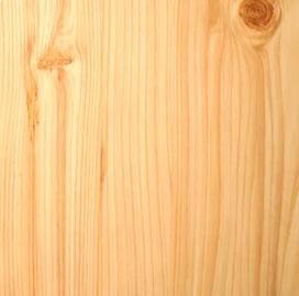 pine5001.jpg