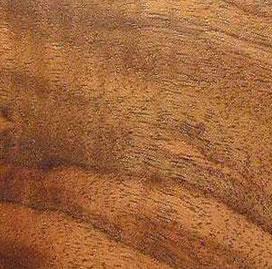 walnutclaronf5001.jpg
