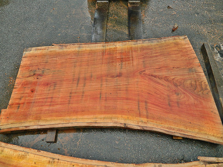 """Red Eucalyptus Slab GWS-804 3¼""""x39""""-48""""x83"""" - wood slab"""