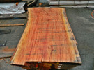 "Red Eucalyptus Slab GWS-805 3¼""x40""-50""x83"" - wood slab"