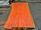 "Red Eucalyptus Slab GWS-809 3¼""x40""-51""x83"" - wood slab"