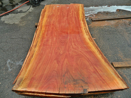 "Red Eucalyptus Slab GWS-811 3¼""x32""-41""x83"" - wood slab"