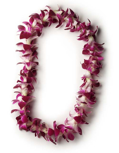 Single Dendrobium Orchid Lei