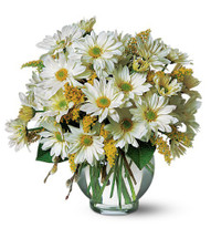 Simply Daisies Bouquet Simply Daisies Bouquet