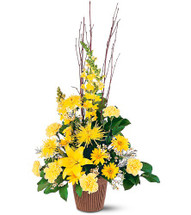 Brighter Blessings Sympathy Arrangement