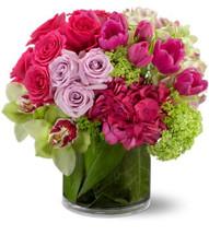 Floral Fantasia Premium