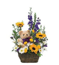 Basket & Bear Arrangement