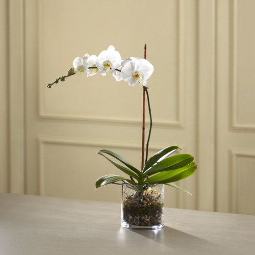 The White Orchid Planter