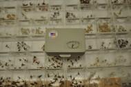 Eldredge Bros Fly Boxes