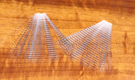 Barred Mayfly Tail