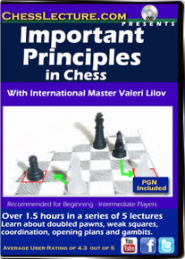 Important Principles in Chess Front Cover