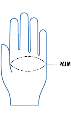 Gloves Plam Size Chart