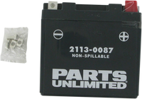 Parts Unlimited Motorcycle Battery