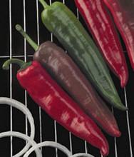 Pepper Hot Griller