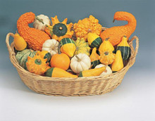 Ornamental Gourds Small Fruits Mix