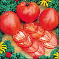 Hungarian Heart Heirloom Tomato