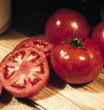 Pik Rite Tomato