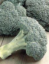 Broccoli Packman