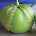 Tomatillo Gigante Tomato Seeds