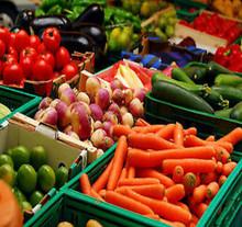 15000 Heirloom Vegetable Seed Bank