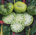 Promotional Seed Pack Tomato Aunt Ruby's German Green 25 seeds