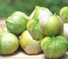 Tomatillo Toma Verde Tomato