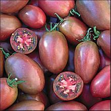 Purple Russian Heirloom Tomato
