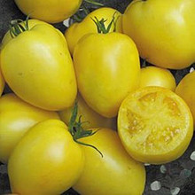 Powers Heirloom Tomato