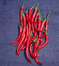 Pepper Seed -  Hot Cayenne Long Red Thin