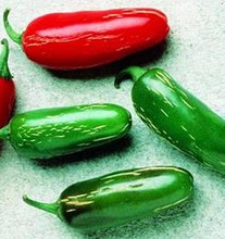 Pepper Seed - HOT - Tam Jalapeno