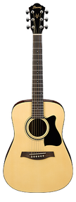 Ibanez IJV30 Jampack 3/4 Size Acoustic Guitar Package