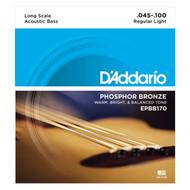 D'Addario EPBB170 Phosphor Bronze 45-100 Acoustic Bass Strings