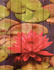 Lotus Blossom Wall Art