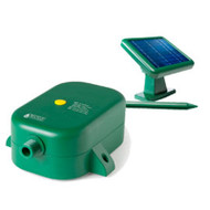 Rain Wizard Solar Pump for Rain Barrels