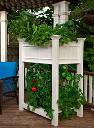 Urbanscape Raised Tomato Planter Box
