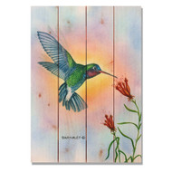 "Broadbill Hummingbird Wall Art 14"" x 20"""