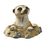 """Kalahari Meerkat Garden Statue 10""""W"""