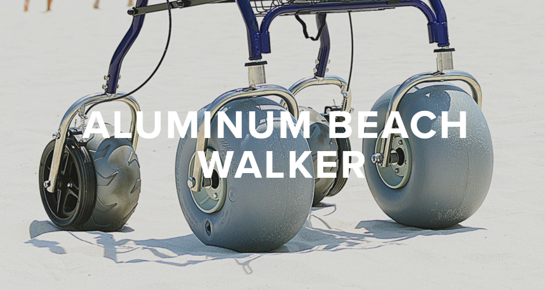 beachwalkerpic1.png